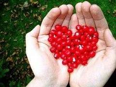 dlonie-serce